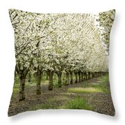 A Flowering Cherry Orchard Throw Pillow