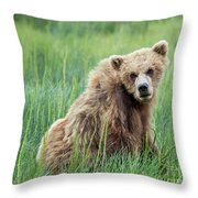 A Glance Back Throw Pillow