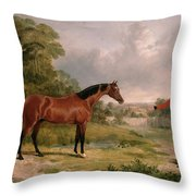 A Horse And A Soldier Throw Pillow