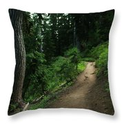 A Path In Paradise Throw Pillow