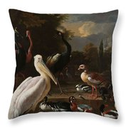 A Pelican And Other Birds Near A Pool, Known As The Floating Feather, Melchior D Hondecoeter, Throw Pillow