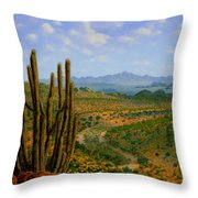 A Place Of Wonder Throw Pillow