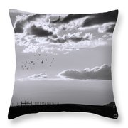 A Quiet World Throw Pillow