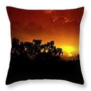 A Red Hot Desert Sunset  Throw Pillow