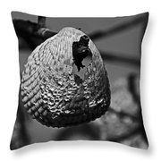 A Shell At The Shore Throw Pillow