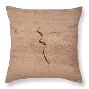 A Snake On The Dirt Throw Pillow