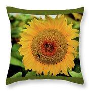 A Texas Flower Throw Pillow
