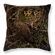 A Visit To The Nest Throw Pillow