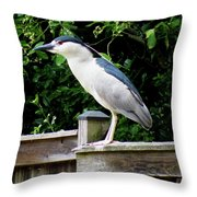 A Wild Resident Throw Pillow