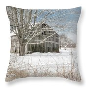 A Winters Day Throw Pillow