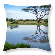 Acacia Tree Reflection Throw Pillow