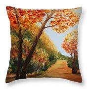 Acrylic Msc 164 Throw Pillow