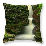 Pennsylvania Adams Falls Throw Pillow