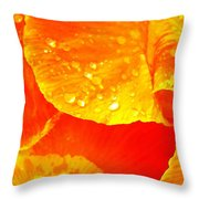 After The Rain ... Throw Pillow