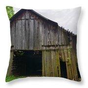 Aged Wood Barn Series Throw Pillow