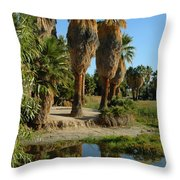 Agua Caliente Park Throw Pillow