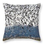 Air Traffic Throw Pillow