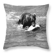 Alaska: Brown Bear Throw Pillow