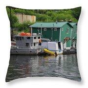 Alaska_00029 Throw Pillow