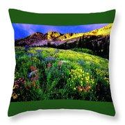 Albion Basin Throw Pillow