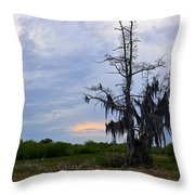 Almost Sunset Throw Pillow