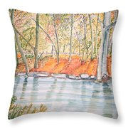 Along The Wissahickon Throw Pillow