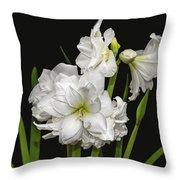 White Amaryllis Throw Pillow