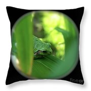 Ambiguous Throw Pillow