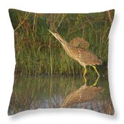 American Bittern Close To Shore Throw Pillow