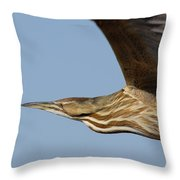 American Bittern Flies By Throw Pillow
