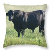 American Cow Throw Pillow