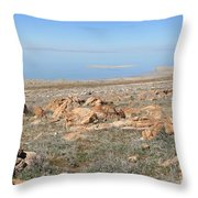 An Island View 3 Throw Pillow