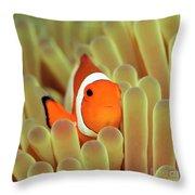 Anemone And Nemoish. Throw Pillow