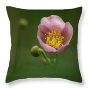 Anemone Japonica  Throw Pillow