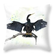Anhinga Bird Throw Pillow