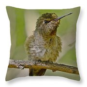 Anna's Perched Throw Pillow