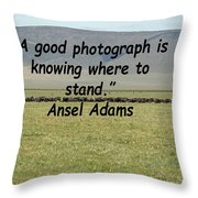 Ansel Adams Quote Throw Pillow