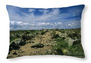 Appalachian Trail - White Mountains New Hampshire Usa Throw Pillow