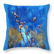 Apricot Blossoms El Valle Throw Pillow