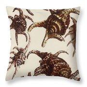 Aquatic Animals - Conch - Shells - Snails Throw Pillow