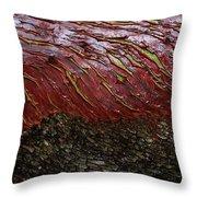 Arbutus Tree Bark Throw Pillow