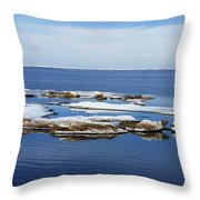 Arctic Ice Throw Pillow