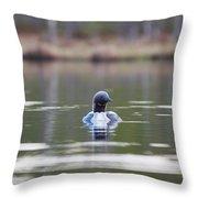 Arctic Loon Throw Pillow