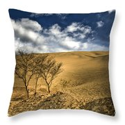 Argentina Desert Landscape Throw Pillow
