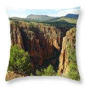 Arizona Landscape Throw Pillow