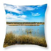 Arizona Riparian Preserve  #4 Throw Pillow