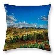 Arizona Sunrise 8 Throw Pillow