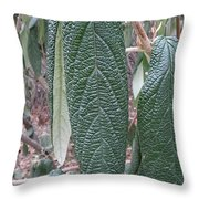Art Of Nature, Leave Skin Throw Pillow