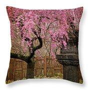 Asian Spring Throw Pillow by Chris Lord