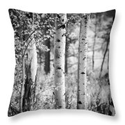 Aspen Trees In Black And White Throw Pillow